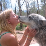 Author Rachael Rachael Messiter. Author and Dog Listener with Magpie at Mission Wolf Colorado